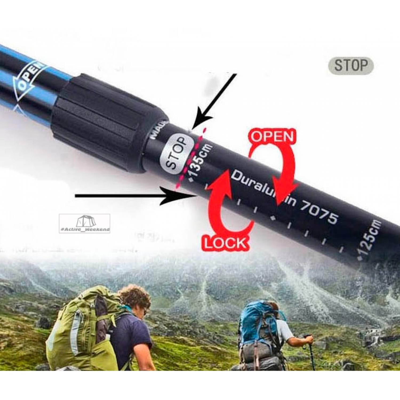 Трекинговая палка Salaman K2 Dinamic mountain - 2 шт.